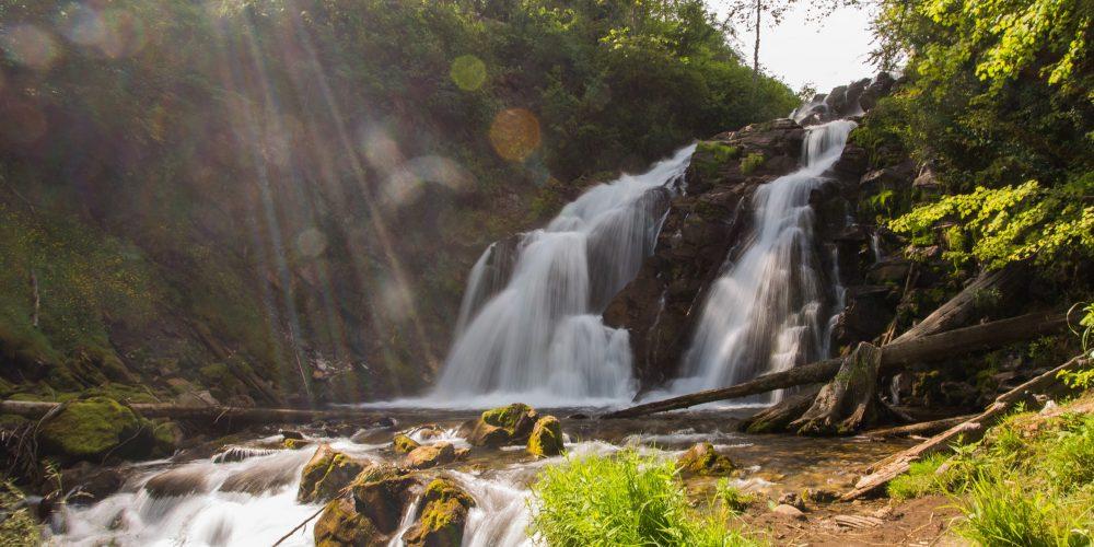 Fairy Creek Falls - 13th August 2014